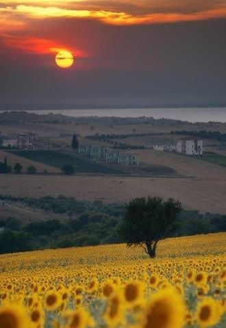 tuscany-sunset