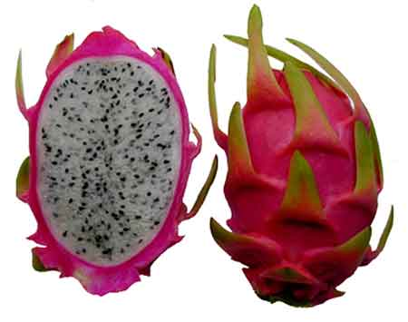 dragonfruit-thai-food