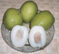 jujube-thai-food