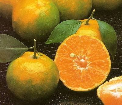 tangerine-thai-fruit