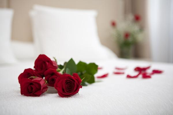 hotels san valentines day