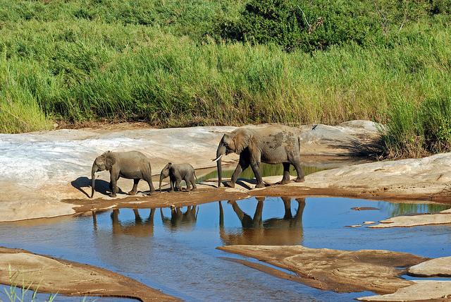 Honeymoon destinations in South Africa